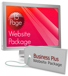 Business Plus Website Package